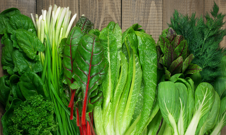 LGMA takes action to update leafy greens food safety practices